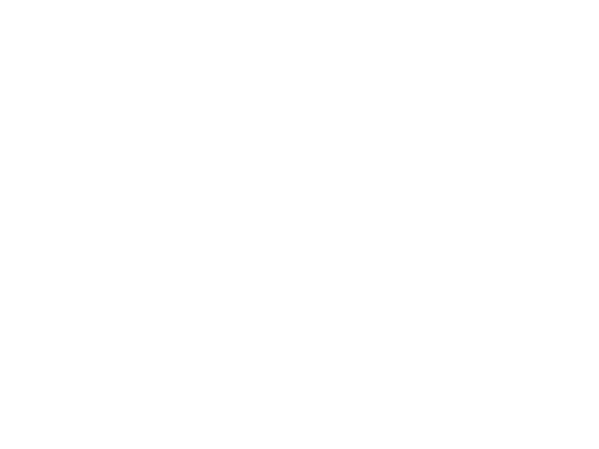 brains_logo